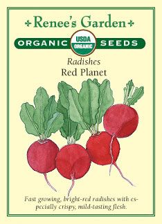 Radish, Red Planet: keep moisture even/consistent, sow 2-3 inches apart, plant every 7 days for a continuous supply