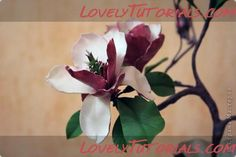 Magnolia gumpaste flower tutorial