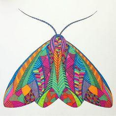 #milliemarotta #adultcolouring #colouringbook #colouringinforgrownups #art #colour #color #illustration #staedtler #mystaedtler #ink #pen #pens #animalkingdom #moth #moths #insects