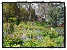 Northernhay Gardens in Exeter, where young writer E. Delafield), drafted her first novels in lunch breaks as VAD, during the years of World War One. Exeter Castle, Visit Devon, World War One, First Novel, The Past, Writers, Texts, Novels, Gardens