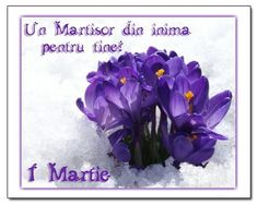 8 Martie, Happy Birthday, Greeting Cards, Nature, Fimo, Happy Brithday, Naturaleza, Urari La Multi Ani, Happy Birthday Funny