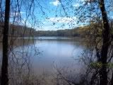 I took this picture at Mill Creek Park, Youngstown, Ohio. By Julie Arduini