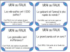vrai ou faux Autism Activities, Interactive Activities, Activities For Kids, French Classroom, School Classroom, Reading Resources, Reading Activities, Ontario Curriculum, Class Games