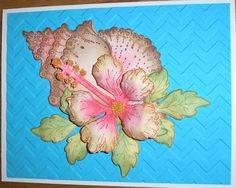 Hybiscus & Conch by Nan Cee's - Cards and Paper Crafts at Splitcoaststampers