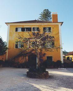 Surf Break: A Portuguese Wine Tasting Portuguese Culture, Weekend Trips, Wine Tasting, Boho Wedding, Portugal, Surfing, Illustrations, Weddings, Landscape