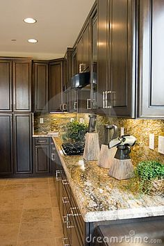 Modern Luxury Kitchen With Dark Cabinets And Granite Counter Tops..exchange  The Modern