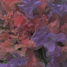 Images and videos of pastel aesthetic Angel Aesthetic, Nature Aesthetic, Flower Aesthetic, Aesthetic Photo, Pink Aesthetic, Aesthetic Pictures, Picture Wall, Photo Wall, 7 Arts