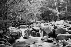Bergbach (Nikon / Ilford Pan F Plus Shoot Film, Vacation Spots, Over The Years, Nikon, Waterfall, River, Black And White, Places, Photography