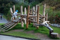 natural climbing structures - Google Search