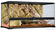 Bilderesultat for sliding door terrarium