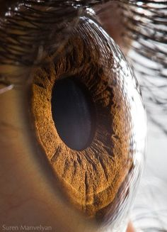 Extreme close of eyes, with all their relief.  by Suren Manvelyan
