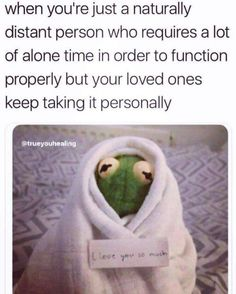 Funny Kermit Memes, Really Funny Memes, Stupid Funny Memes, Funny Relatable Memes, Hilarious, Funny Sarcasm, Funny Memes About Life, Funny Relationship Memes, Funny Life