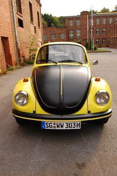 Volkswagon Van, Car Volkswagen, Beetle Gsr, Vw Modelle, Abandoned Cars, Commercial Vehicle, Vw Beetles, Cars And Motorcycles, Porsche