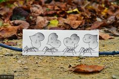 Drawing in a photo!  :)    Ben Hein Drawing Vs Photography