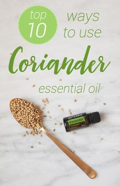 Coriander essential oil is closely related to Lavender and can help with acne, digestion, rashes, body odor, and more. Click to see the top 10 ways to use Coriander essential oil!
