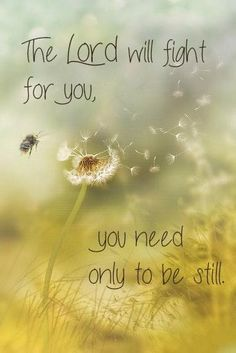 """The Lord will fight for you; you need only to be still.""  Exodus 14:14  Can you be still when everything in you wants to act out?  ""Stand firm and you will see the deliverance the Lord will bring you today."" EX14:13  (H.R.)"