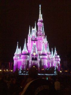 Magic Kingdom Castle, Disney