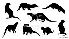 http://www.dollarphotoclub.com/stock-photo/otter silhouettes/71491599 Dollar Photo Club millions of stock images for $1 each