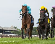 https://www.paulickreport.com/news/thoroughbred-racing/lady-eli-heart-thrilling-diana-victory/