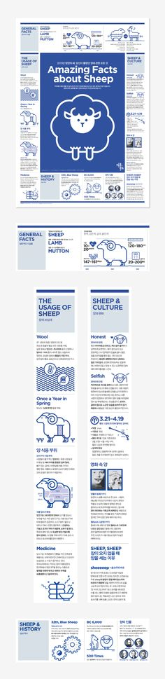 [poster] Amazing Facts about Sheep | 203 × Infographics Lab