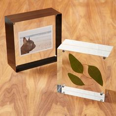 Held together with tiny magnets, these Acrylic Frames are an easy way to display photos and mementos.