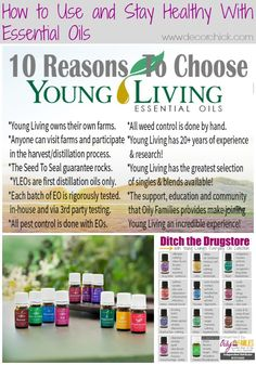 How We Are Staying Healthy With Young Living Essential Oils - Decorchick!