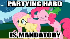 #445227 - animated, animation error, caption, fluttershy, gummy, headbob, image macro, may the best pet win, nod, party hard, pinkie pie, sa...