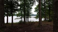 1.96 Acres to build your lake home at Toledo Bend! Lake Lots For sale