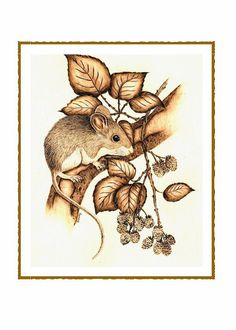 Mouse and Berries