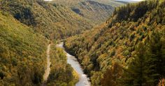 Pine Creek Gorge is one of Pennsylvania's natural wonders. Also known as the Grand Canyon of Pennsylvania, this gorge cuts 800 feet deep through the forest of @tiogacountypa. Aside from breathtaking views, this National Natural Landmark is also a popular #biking destination.