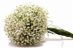 wedding bouquet wedding bouquets (for bridesmaid)
