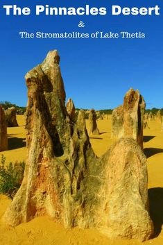 The Travelling Lindfields: Pinnacles and Stromatolites: Ancient formations and living fossils on Western Australia's Coral Coast. Visit Australia, Western Australia, Australia Travel, Fiji Travel, New Travel, Travel Tips, Travel Articles, Travel Advice, Travel Ideas