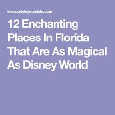 12 Enchanting Places In Florida That Are As Magical As Disney World