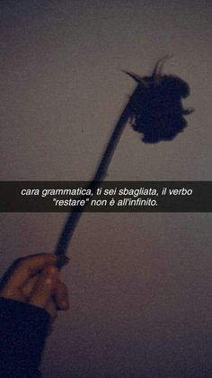 Mood Wallpaper, Wallpaper Quotes, Boys Are Stupid, Tumblr, Wallpaper Iphone Disney, Arabic Love Quotes, Insta Story, Going Crazy, Depressed