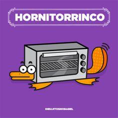 Hornitorrinco, ornitorrinco