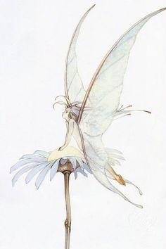 The Art of Yoshitaka Amano Fairy Drawings, Art Drawings Sketches, Cute Drawings, Fantasy Creatures, Mythical Creatures, Pretty Art, Cute Art, Elfen Tattoo, Fantasy Art