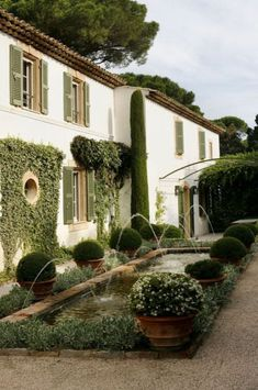 Garden with boxwood and pond with Moorish influence in Saint remy de Provence, Luberon Garden Pool, Water Garden, Garden Landscaping, Garden Beds, Topiary Garden, Cacti Garden, Fence Garden, Gravel Garden, Garden Oasis