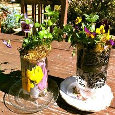 Plastic soda bottles turned into planters.