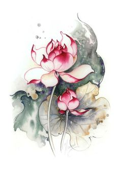 Heir to the Throne Art Print by Anna Ewa Miarczynska. All prints are professionally printed, packaged, and shipped within 3 - 4 business days. Choose from multiple sizes and hundreds of frame and mat options. Orchids Painting, Lotus Painting, Fabric Painting, Watercolor Flowers, Watercolor Paintings, Original Paintings, Watercolor Lotus, Watercolor Inspiration, Orchid Drawing