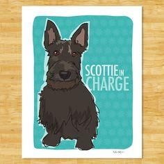 Scottish Terrier Modern Dog Art  Scottie in Charge by PopDoggie, $18.00