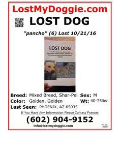 http://www.lostmydoggie.com/pet_images/pdf/faxing/149580.pdf