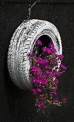 tire garden