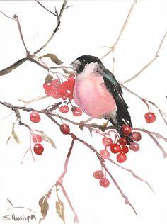 Bullfinch and berries original watercolor painting by ORIGINALONLY, $30.00