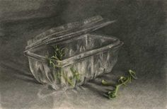 Jo Bradney - tomato stalks and empty plastic box - charcoal and pastel drawing