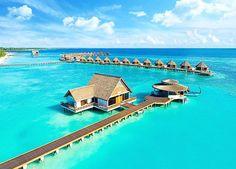 New Resorts Collection Mercure Maldives Kooddoo Resort #mercurehotels #Maldives #bestvacations #WorldTravelGuide #LalumiTravels #warrenjc #livetravelchannel #sunnysideoflife #maldivity #travel #traveling #vacation #dive #surfing #adventureculture #instago