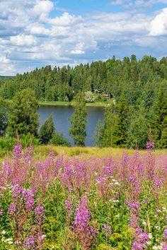 Avon, Mountains, Nature, Travel, Historia, Naturaleza, Viajes, Destinations, Traveling