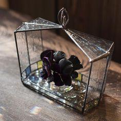 テラリウム。置いても壁掛けでもお使いいただけます。 #香川三枝子 #ステンドグラス
