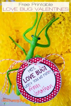Free Printable Love Bug Valentines | The perfect free printable Valentine for the ones who like all things creepy crawly! INSTANT DOWNLOAD.
