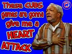 Chicgo Cubs, Bear Cubs, Bears, Chicago Cubs Fans, Chicago Cubs Baseball, Cubs Games, Go Cubs Go, Wrigley Field, Sports Stars