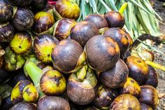 Health Benefits of Palmyra Palm Fruit